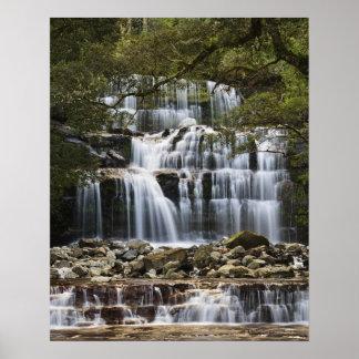 La reserva del estado de las caídas de Liffey nest Posters