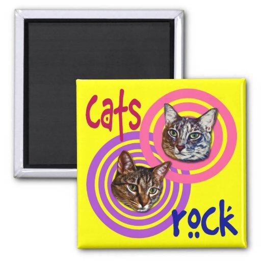 La roca del gato iman