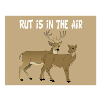 La rodera divertida de los ciervos está en el aire postal