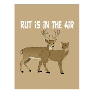 La rodera divertida de los ciervos está en el aire postales