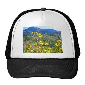 La ropa hermosa imprimió con una foto de la gorra