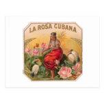 La Rosa Cubana Diseño Vintage Cuba Tarjetas Postales