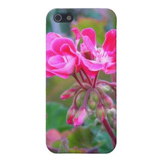 La rosa fuerte florece la foto colorida hermosa de iPhone 5 cobertura