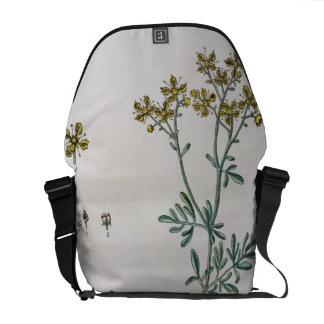 """La ruda, platea 7 """"de un herbario curioso"""", public bolsa de mensajeria"""