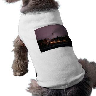 La rueda y el ciclón de la maravilla en la noche camiseta de perro