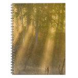 La salida del sol de niebla en Tamarac NWR acerca  Libros De Apuntes