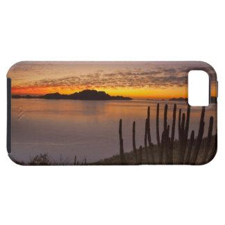 La salida del sol sobre Isla Danzante en el golfo iPhone 5 Carcasa