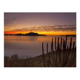 La salida del sol sobre Isla Danzante en el golfo Tarjeta Postal