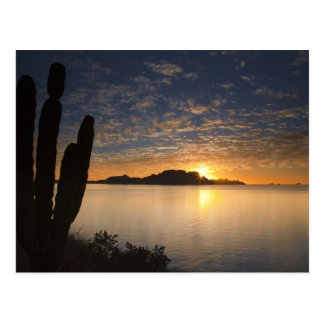 La salida del sol sobre Isla Danzante en el golfo Tarjetas Postales