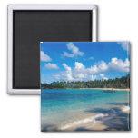 La Samana Peninsula, Dominican Republic, 2 2 Inch Square Magnet