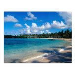 La Samana Peninsula, Dominican Republic, 2 Postcard