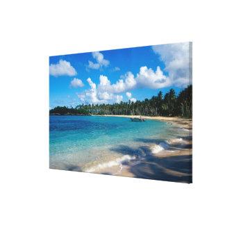 La Samana Peninsula, Dominican Republic, Stretched Canvas Prints