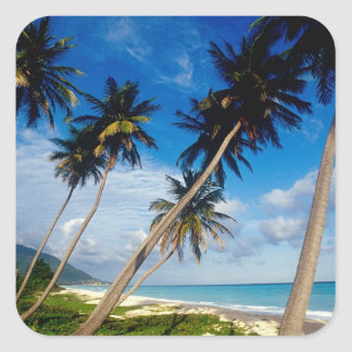La Samana Peninsula, Dominican Republic, Square Sticker