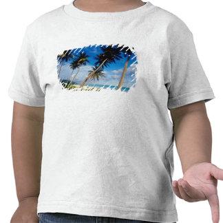 La Samana Peninsula, Dominican Republic, T Shirt