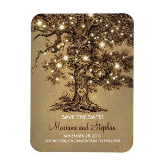 La secuencia enciende reserva rústica del árbol la rectangle magnet