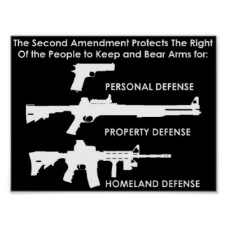 La segunda enmienda protege posters