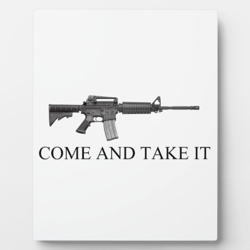 La segunda enmienda viene tomarlo placas con fotos