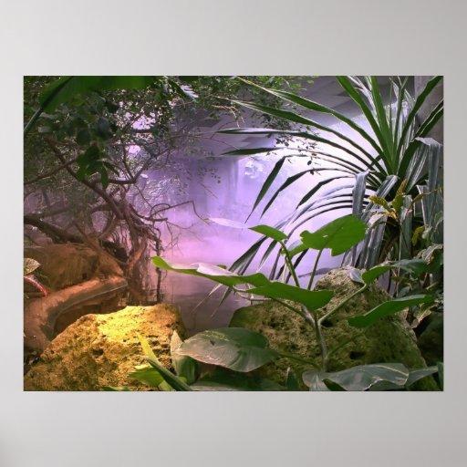 La selva póster