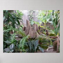 La selva tropical posters