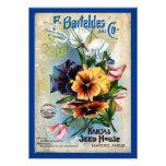 La semilla de flor embala arte del vintage