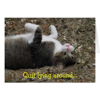 La sensación al revés del gatito mejora la tarjeta