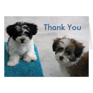 La sentada del perrito le agradece cardar tarjeta de felicitación