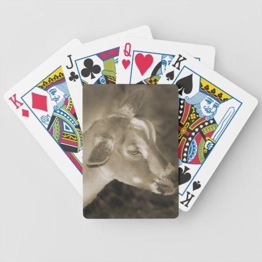 La sepia alpina de la gama afeitó la cara rayada c baraja de cartas