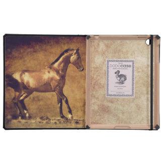 La sepia entonó arte rústico del caballo