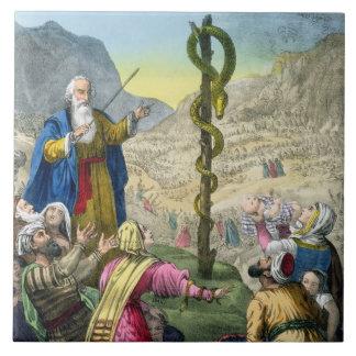 La serpiente descarada, de una biblia impresa por  azulejo cuadrado grande