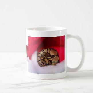 La serpiente se encrespó para arriba en el gorra taza básica blanca