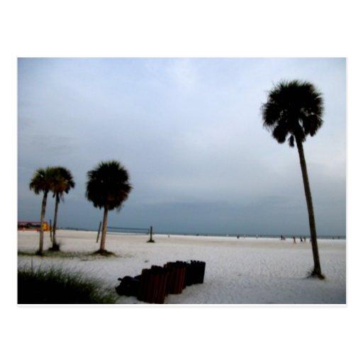 La siesta cierra la playa y el paisaje de las palm tarjetas postales