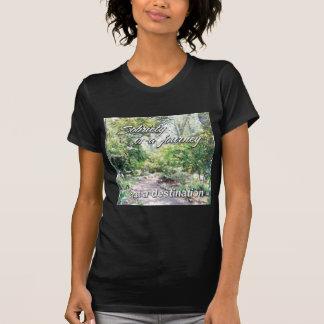 la sobriedad es un viaje camiseta