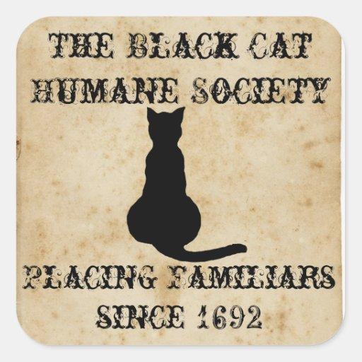 La sociedad humana del gato negro pegatina cuadradas