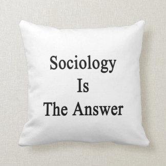 La sociología es la respuesta almohadas