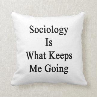 La sociología es qué me guarda el ir cojin