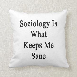 La sociología es qué me mantiene sano cojines