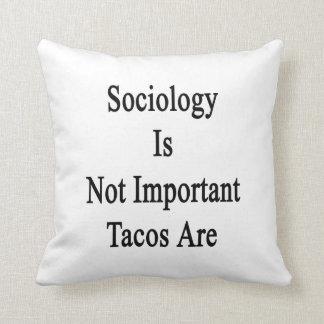 La sociología no es Tacos importante es Almohada