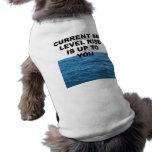 La subida actual del nivel del mar incumbe a usted camisas de mascota