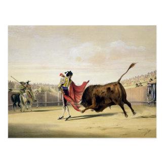 La Suerte de la Capa, 1865 (colour litho) Postcard