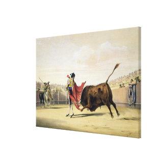 La Suerte de la Capa, 1865 (litho del color) Impresión En Lona Estirada