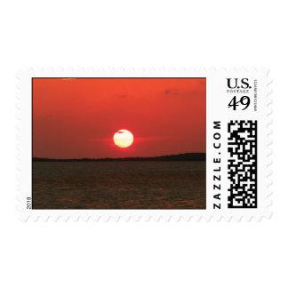La tarde viene timbre postal