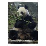 ¡La tarjeta de cumpleaños divertida de la panda, c