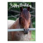 La tarjeta de cumpleaños vieja de la yegua