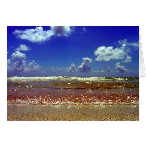 ¡LA TARJETA DE FELICITACIÓN DEL ~Beach~, LO MODIFI