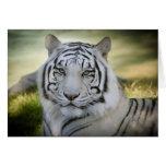 La tarjeta de nota blanca del tigre (v2) personali