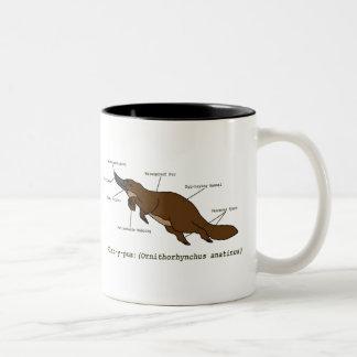 La taza asombrosa de Platypus
