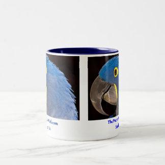 La taza azul de Tara del café del loro
