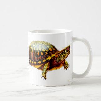 La taza de la tortuga de caja