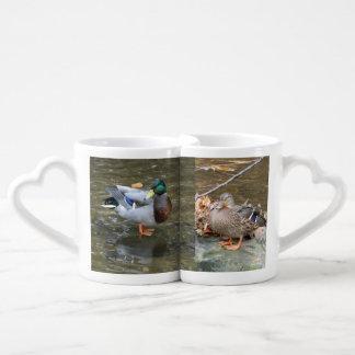 La taza de los amantes del pato del pato silvestre taza amorosa