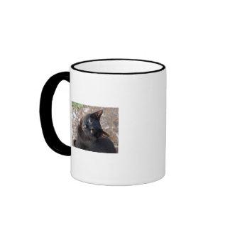La taza de Loui